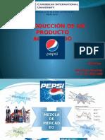 Introducción de un Producto al Mercado.pptx