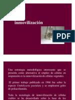 Clase 9 Inmovilización_ppt [Modo de Compatibilidad]