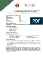 proyecto ambiental 2014.doc