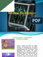 ritmos biologicos