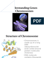 5.3 Understanding Genes and Chromosomes