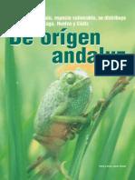 Camaleon de Origen Andaluz