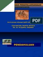 diagnosis dan penatalaksanaan chikungunya