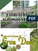 Cadeia Produtiva Da Erva Doce (Est. Agroindustriais