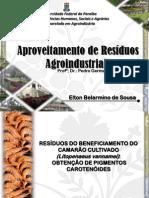 RESÍDUOS DO BENEFICIAMENTO DO CAMARÃO CULTIVADO