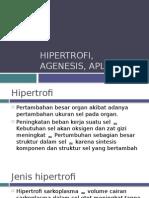 agenesis, aplasia, hipertrofi