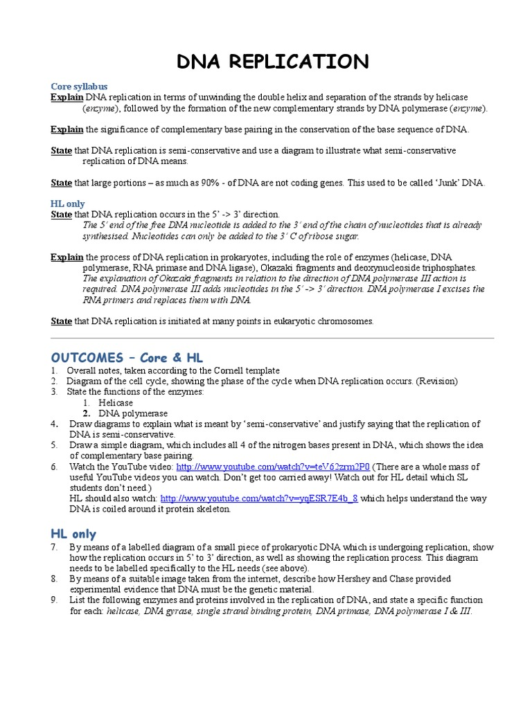 dna replication worksheet dna replication dna