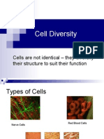 Cell Diversity_tissue Culture