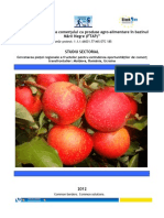 Raport Piata Fructelor