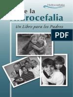 sobre la hidrocefalia web-09