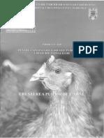Cresterea-Puilor-de-Carne  ANCA.pdf