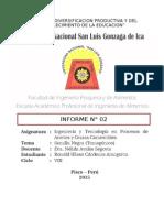 Informe - Transgénicos