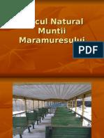 210744787 Www Referate Ro Parcul Natural Muntii Maramuresului Ppt f2796