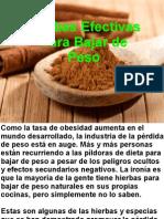 Hierbas Efectivas Para Bajar de Peso