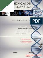 Técnicas de Citogenética
