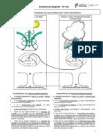 F Inf as Caracteristicas Dos Centros Barometricos
