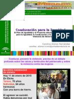 Coeducacion 2015-Carolina Alonso 2