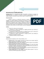 Nervioso - Semiologia - Universidad de Carabobo sede Aragua