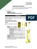 2) Generalidades de Artrología