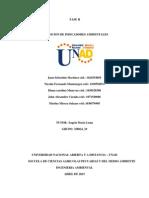 Fase II. Iniciativa Nacional