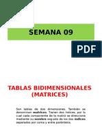 8va.-tablas (Matrices)2013b (1)