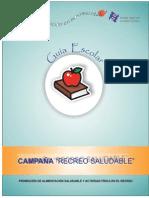 5. GUIA ESCOLAR 19 08 09.pdf