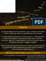 Percepcion Visual Teoria