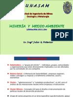 Presentacion Mineria y Medio Ambiente (1)