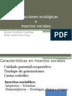 Interacciones Ecológicas e Insectos Sociales