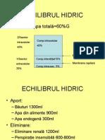 ECHILIBRUL HIDRIC