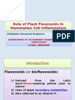 Role of Plant Flavonoids In Mammalian Cell Inflammation.pptx