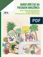 Agroflorestas Na Paisagem Amazonica