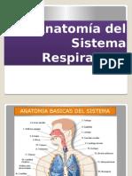 Clase 4 Anatomia Sist Respirator i o