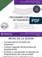 2014 CERC TACNA-programacion de Actividades