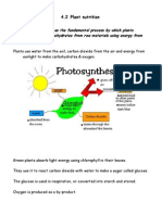 NOTES PLANT NUTRITION.doc