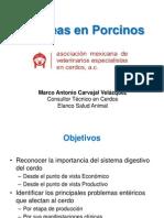 Diarreias en Porcinos