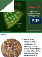 Microbiology Tortora Ch.15 Full