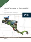 Derecho Ambiental en Centroamérica (Tomo II)