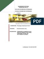 APARATO  DE DIGESTIVO.doc