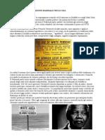 segrezione raziale in america e apartheid new