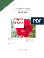 Cayena Roja