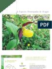 Catálogo de Especies Amenazadas de Aragón