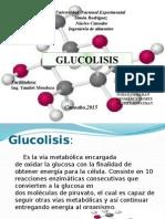 Bioquimica Exposicion Glucolisis (1)