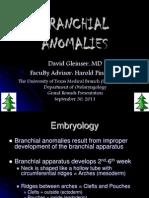 Branchial_Anomolies
