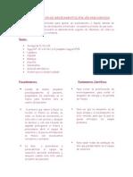 Manual de Fundamentos de Basica II
