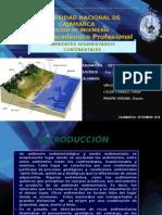 ESTRATIGRAFÍA Y SEDIMENTOLOGÍA Ambientes Sedimentarios Continentales