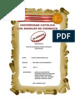 Monografia Estructuras Hidraulicas (1)