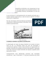 Formação do espaço agrário brasileiro.docx