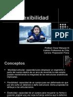Flexibilidad 2014