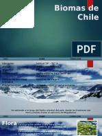 Bioma de La Cordillera de Chile